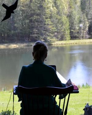 Writing in the Window 300
